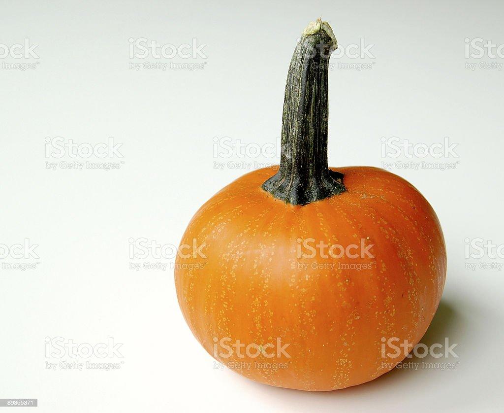 Orange Pumpkin royalty-free stock photo