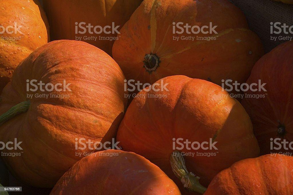 Orange pumpkins royalty-free stock photo