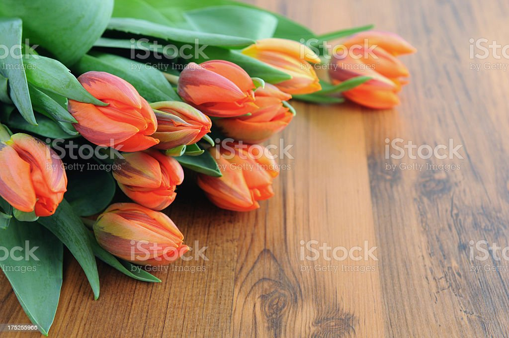 orange red bouquet of tulips royalty-free stock photo