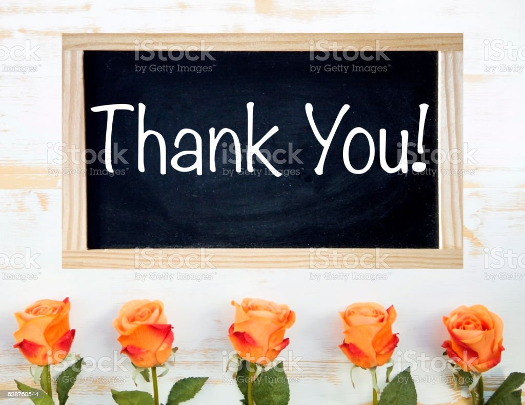 orange roses and black chalkboard with words Thank You stock photo