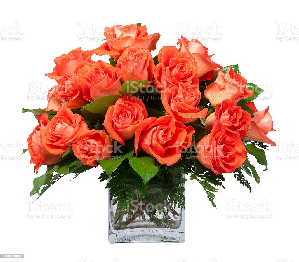 Orange Roses in Vase stock photo