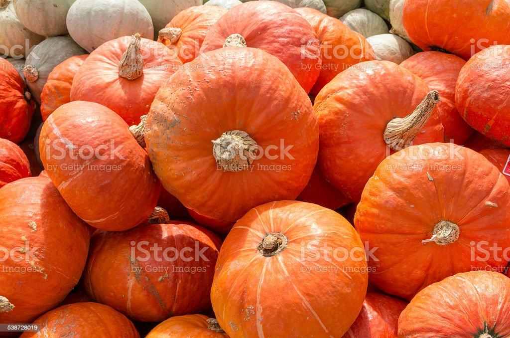 Orange squash on display at the market stock photo