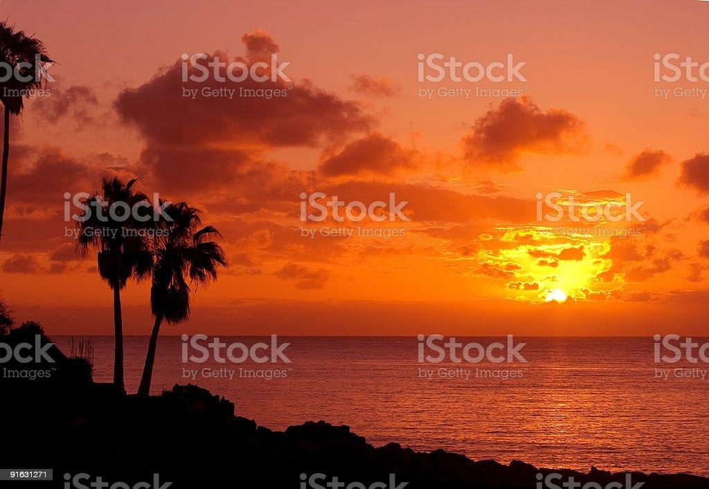 orange sunset on tropical island with palm royalty-free stock photo