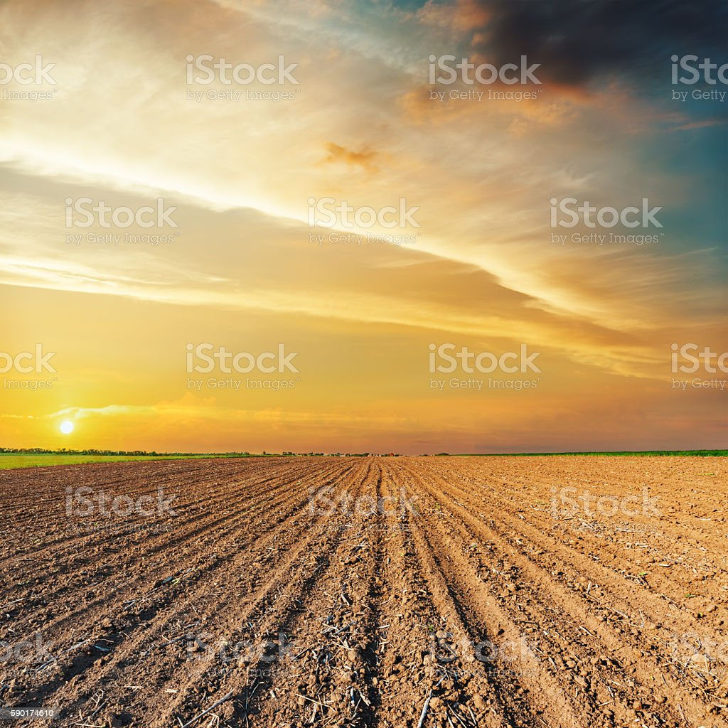 orange sunset over black agriculture field stock photo