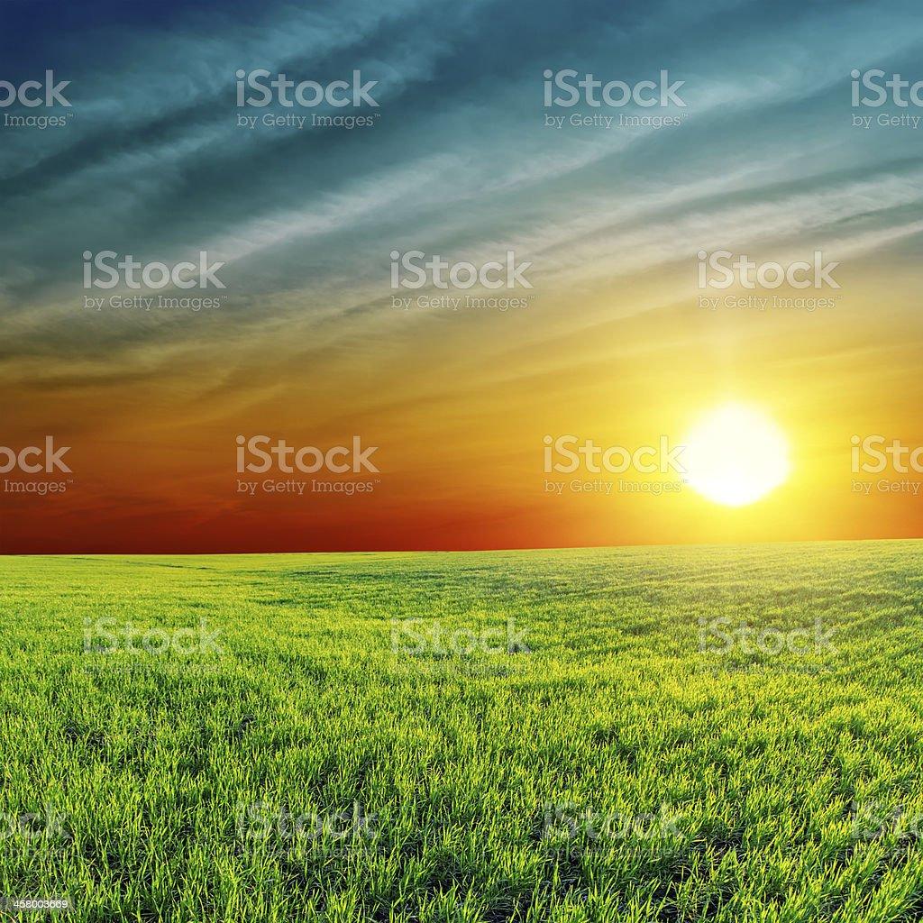 orange sunset over green field royalty-free stock photo