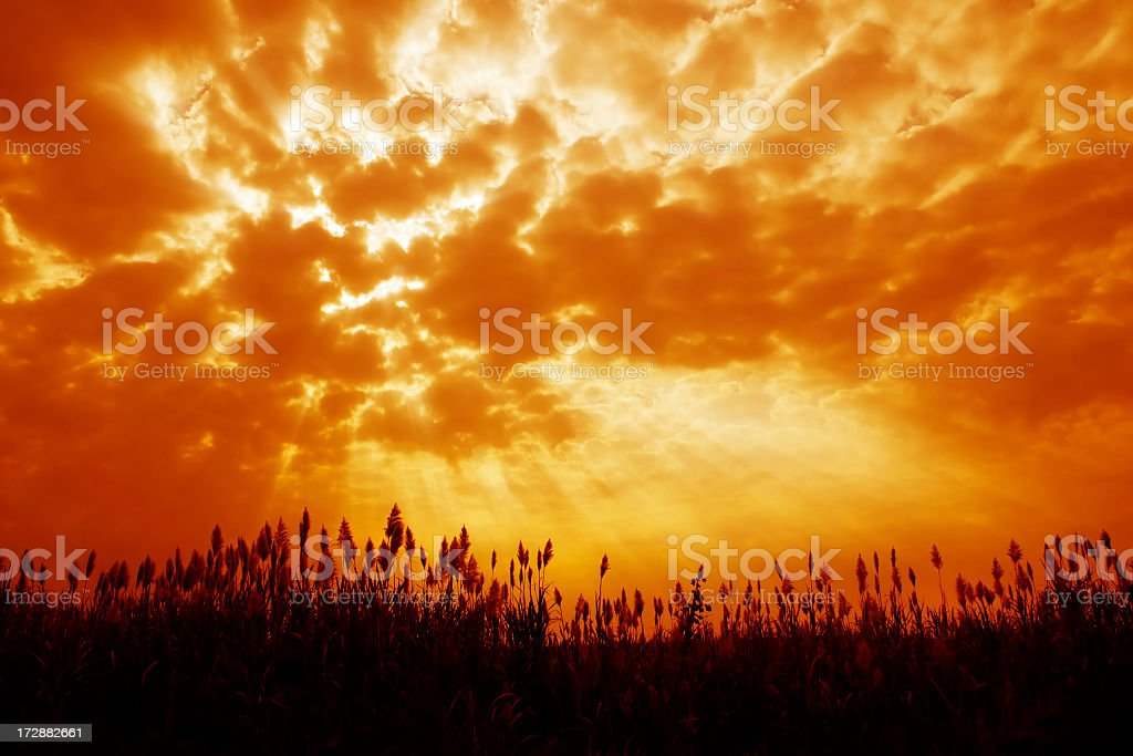 Orange tinted sky illustrating Armageddon stock photo