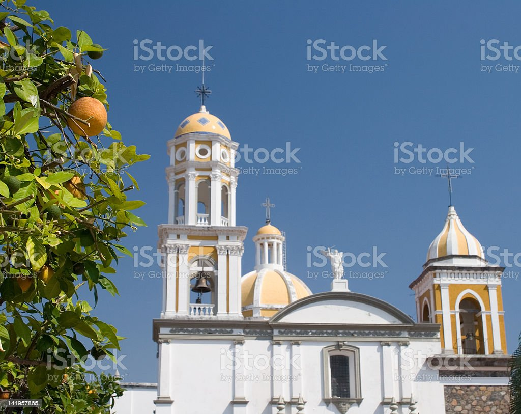 Orange Tree and Church stock photo