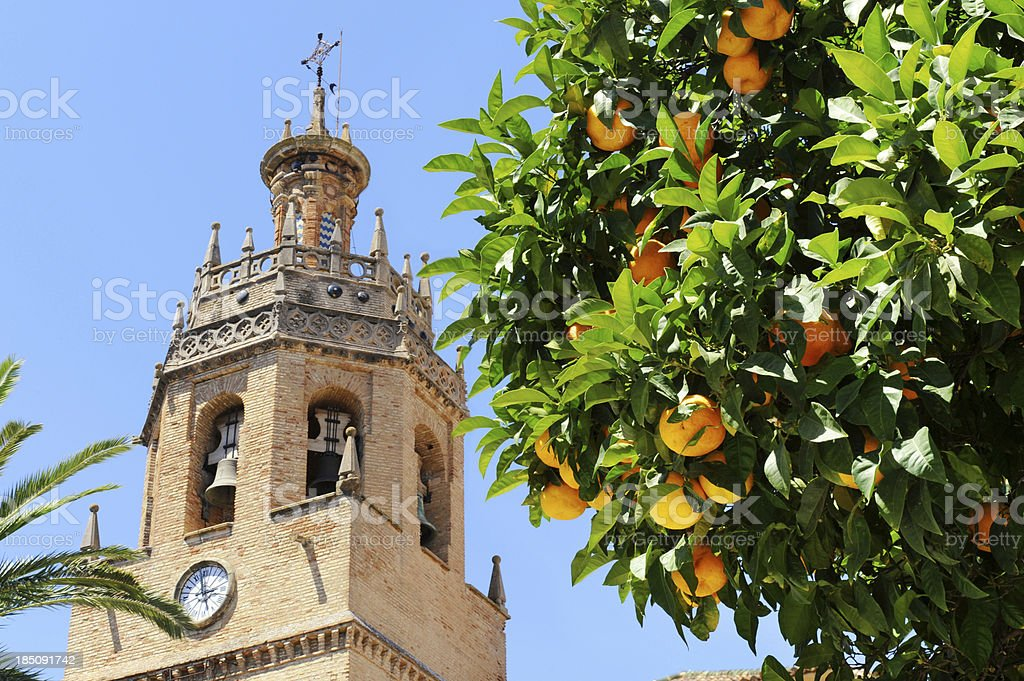 Orange tree in front of bell tower Ronda, Andalusia, Spain stock photo
