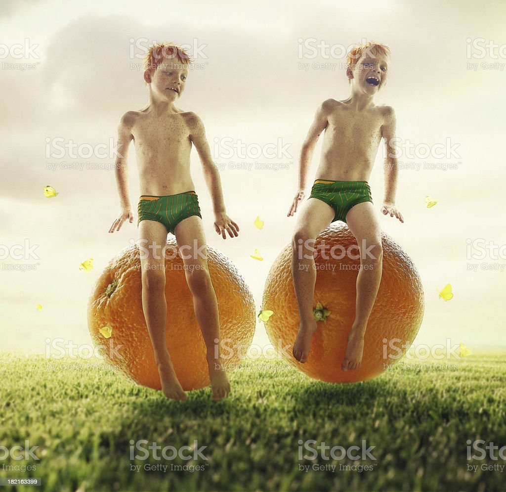 Orange Twins stock photo