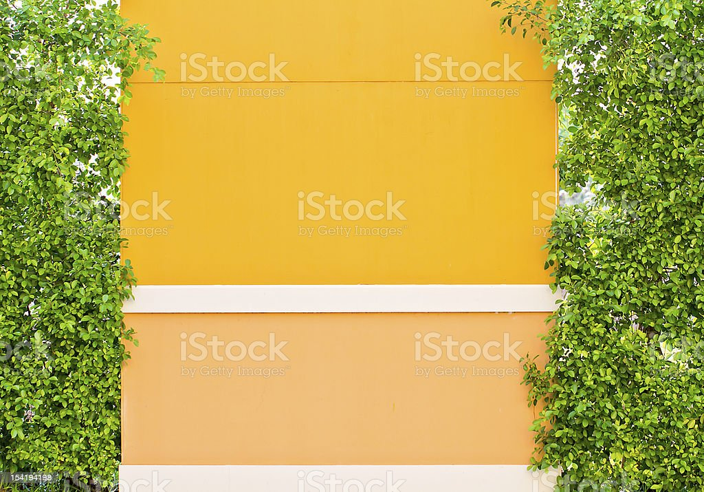orange wall royalty-free stock photo