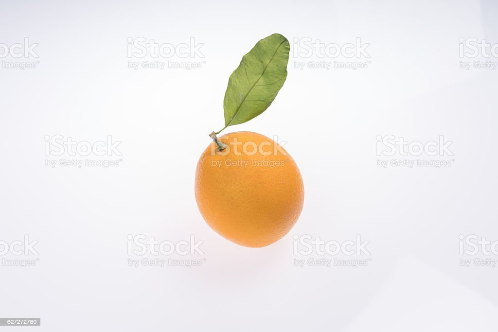 orange with Leafs stock photo