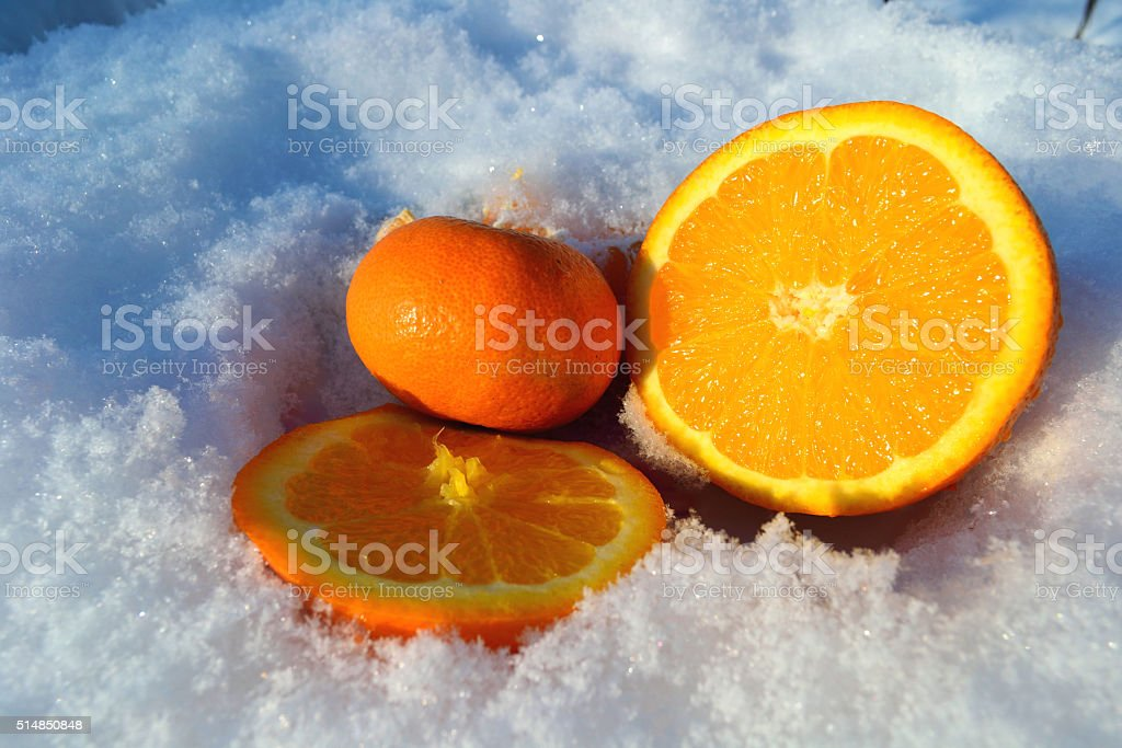 oranges in the snow stock photo