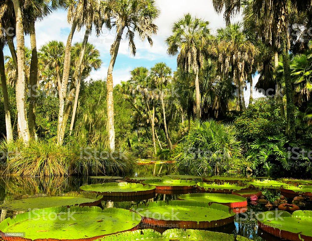 Oranmental Bok Tower Garden in Lake Wales, Florida stock photo