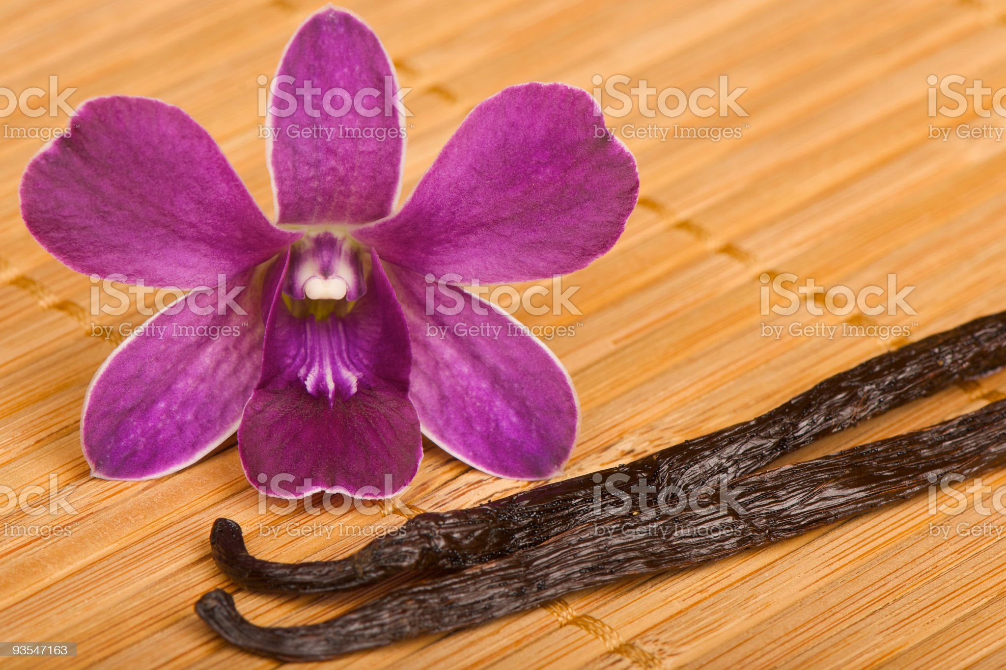 Orchid and Vanilla royalty-free stock photo