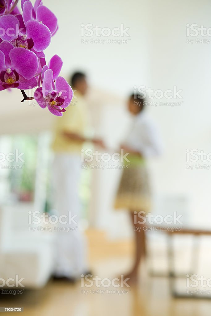 Orchid flowers and people in the background stock photo