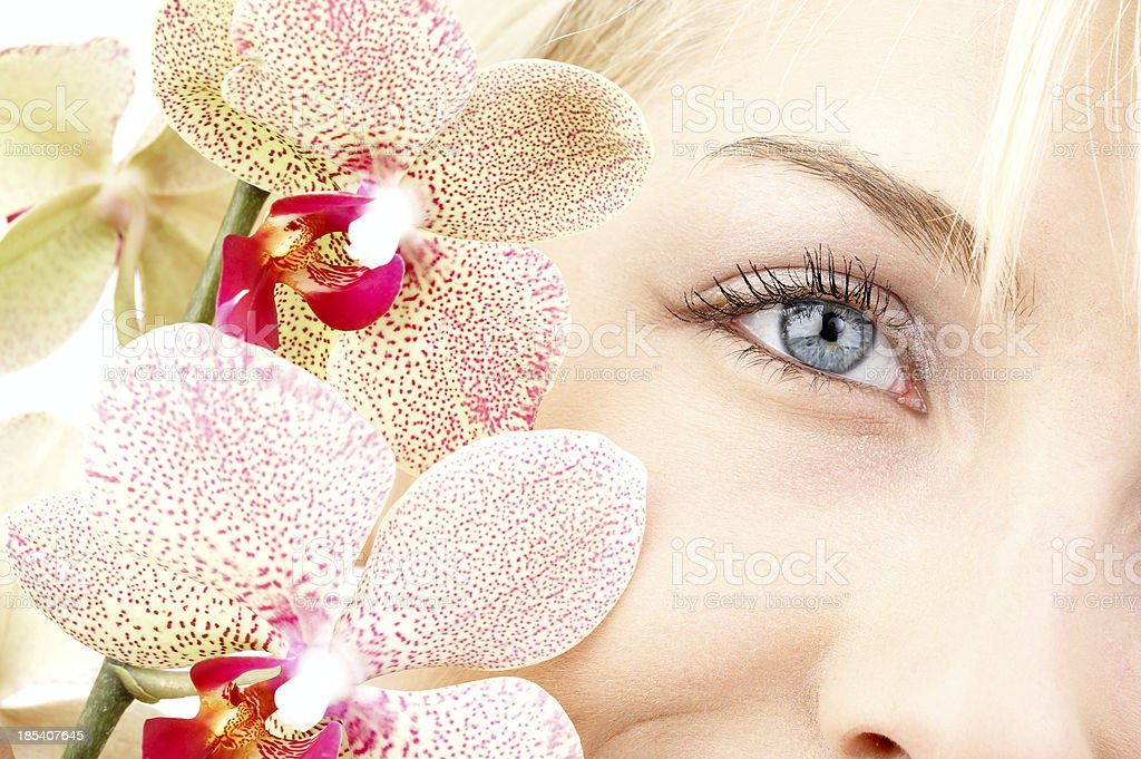Orchid portrait royalty-free stock photo