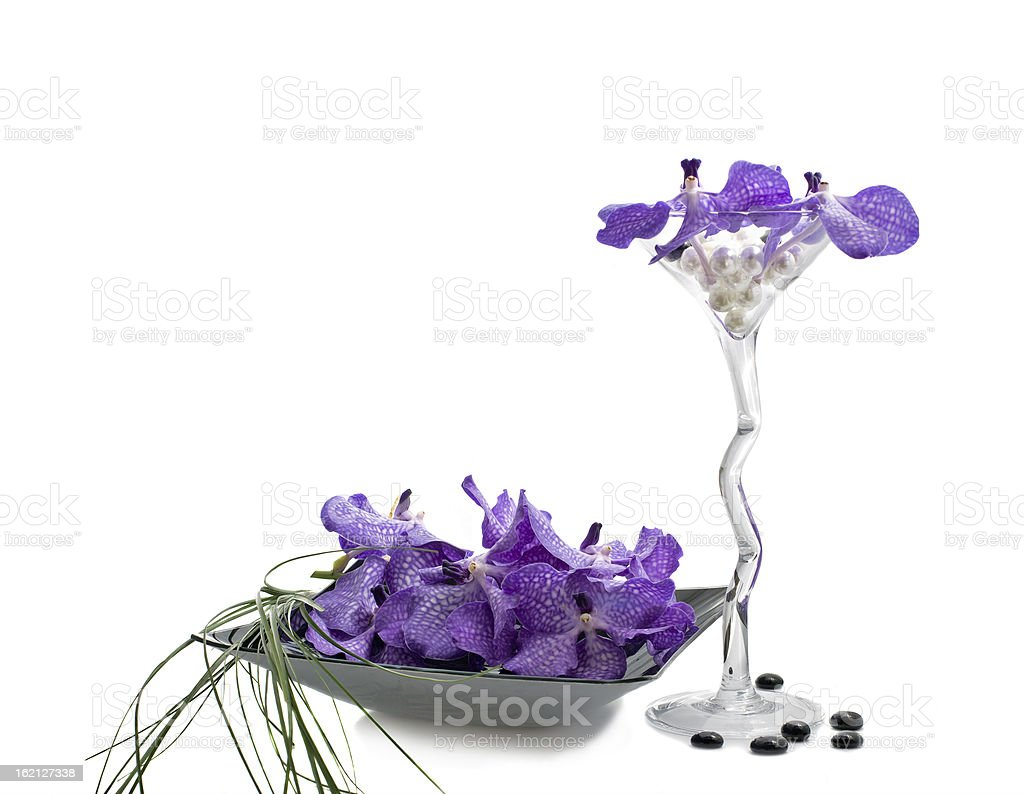 Orchid vanda flowers with wineglass royalty-free stock photo