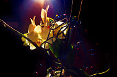 Orchid with string of small light bulbs