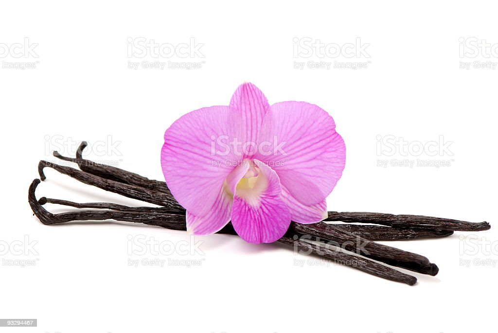 Orchid with Vanilla royalty-free stock photo