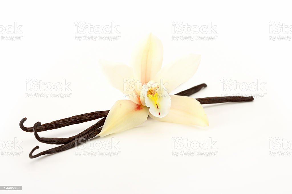 orchid with vanilla stock photo