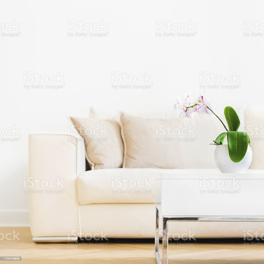 Orchidaceae and Sofa royalty-free stock photo