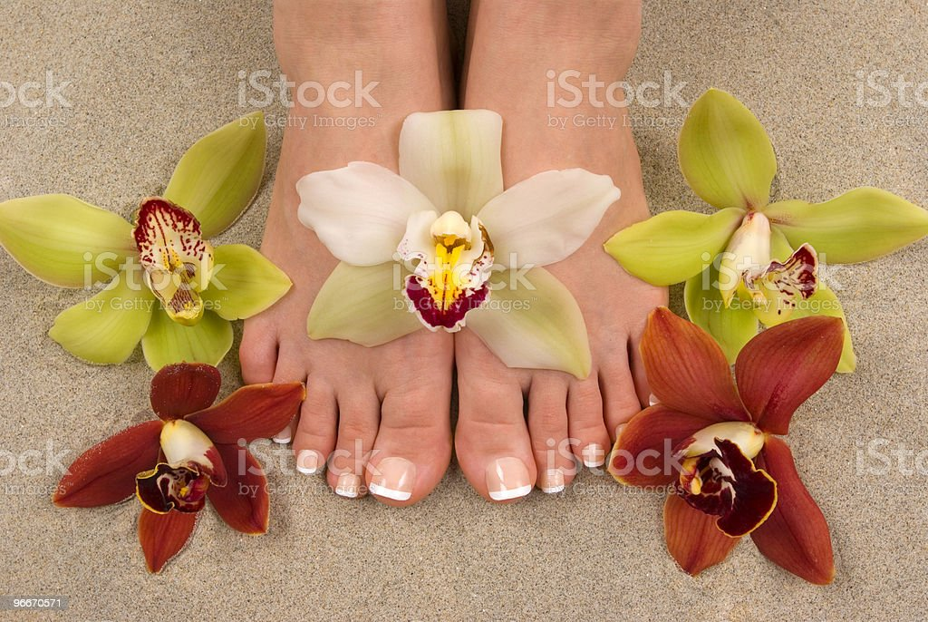 Orchids and Feet stock photo