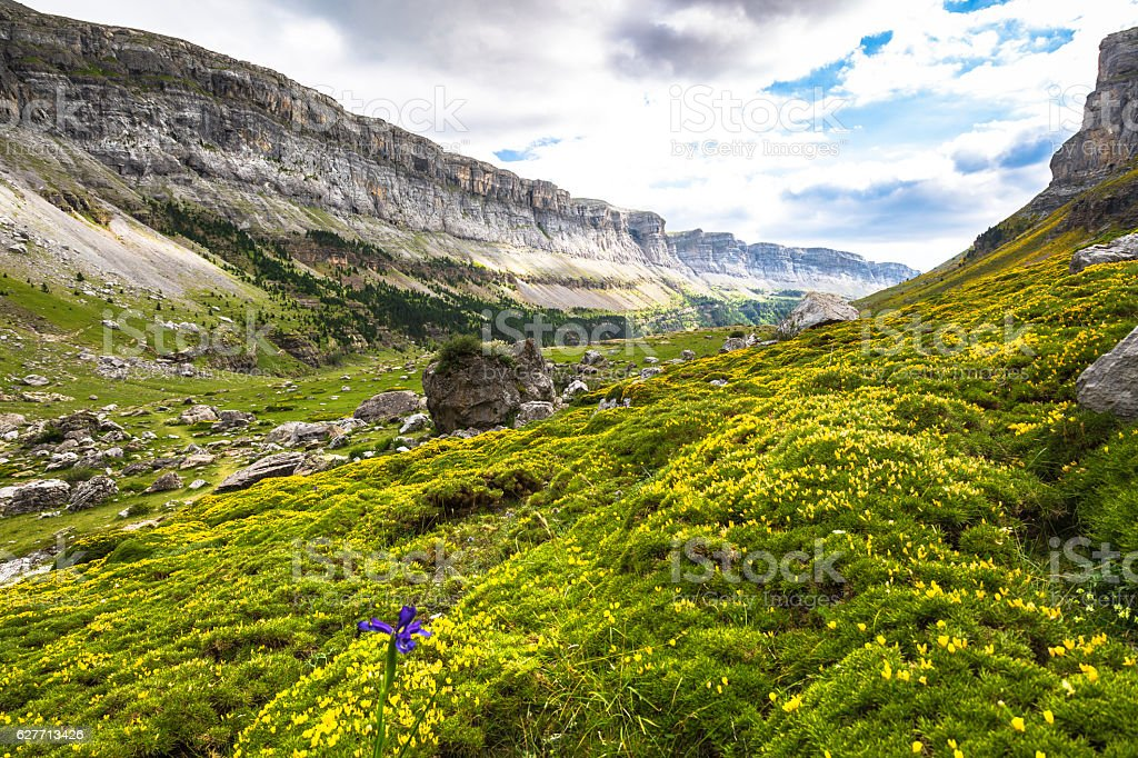 Ordesa valley in pyrenees, Huesca. Spain. stock photo