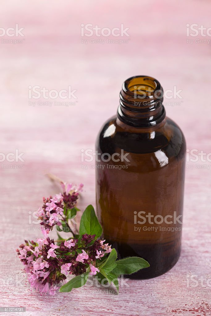 oregano essential oil stock photo