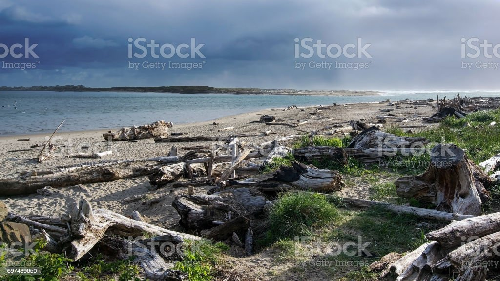 Oregon Beach Landscape stock photo