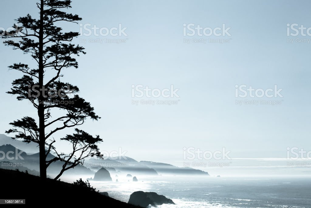 Oregon Coast Ocean Scenery royalty-free stock photo
