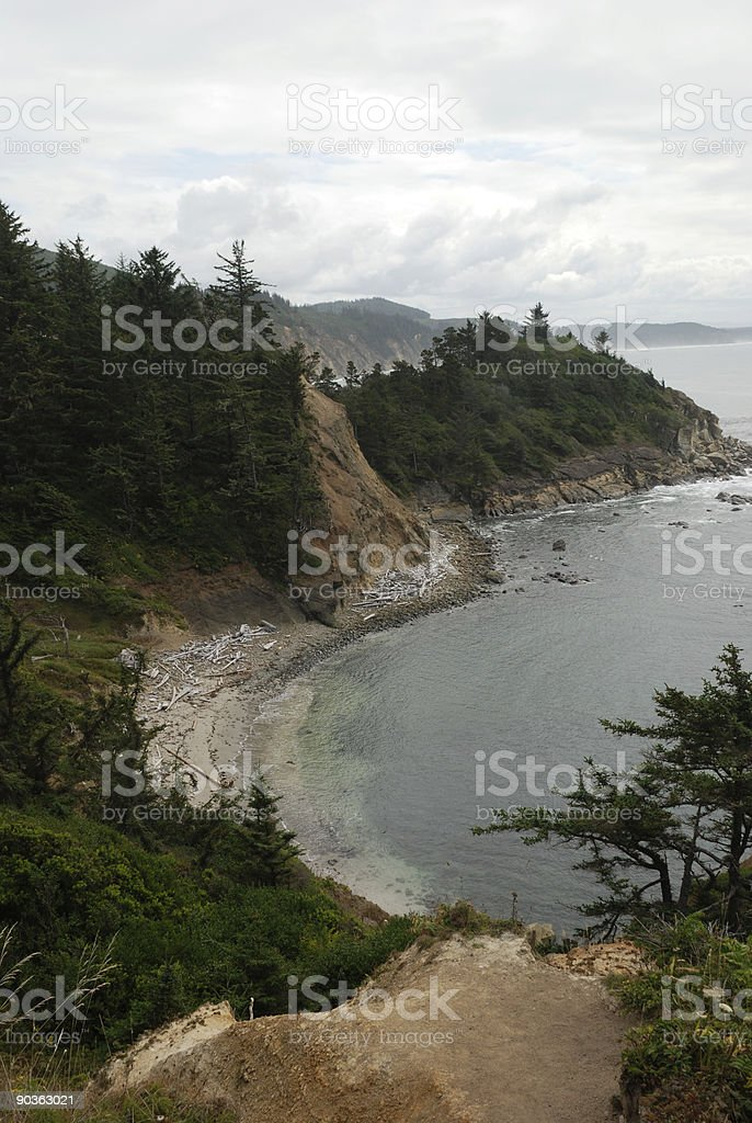 Oregon Coast on an Overcast Day royalty-free stock photo