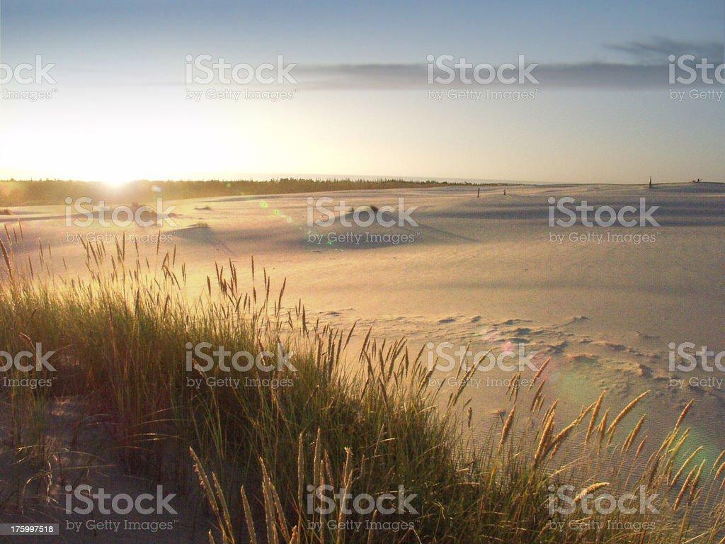 Oregon Dunes royalty-free stock photo