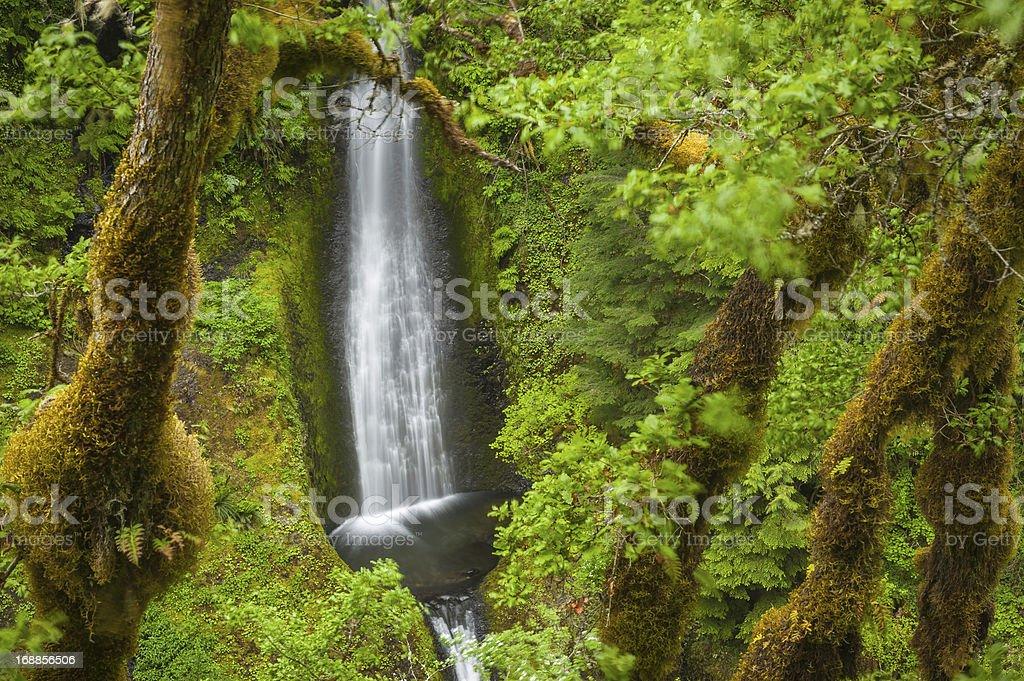 Oregon Eagle Creek trail waterfall Cascades USA stock photo