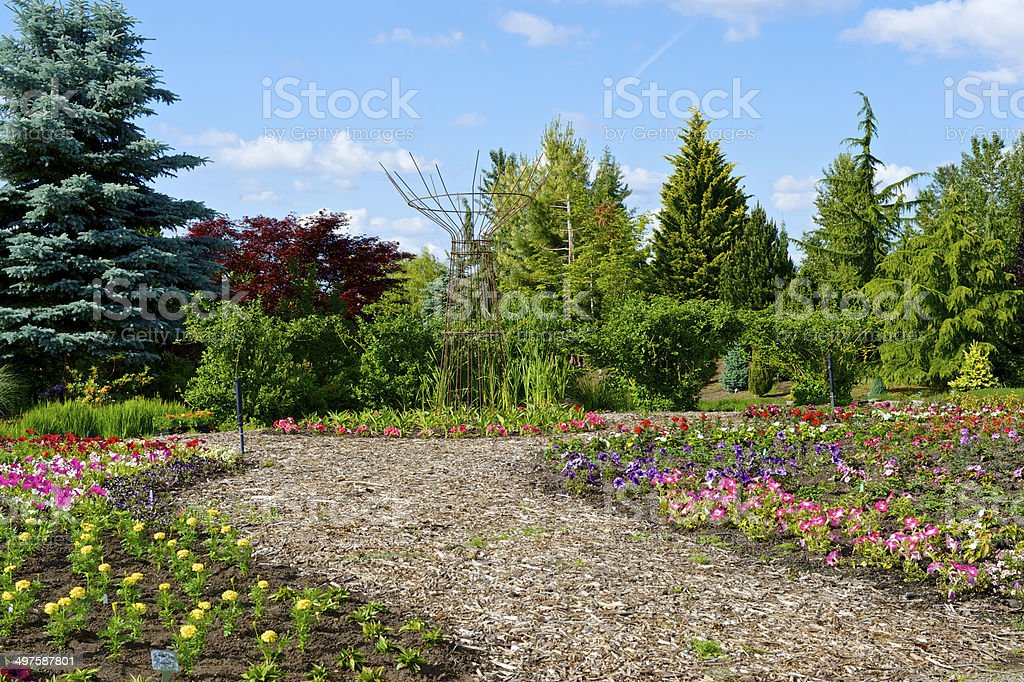 Oregon Garden Spring Walking Path Mulch Young Plants Trees royalty-free stock photo
