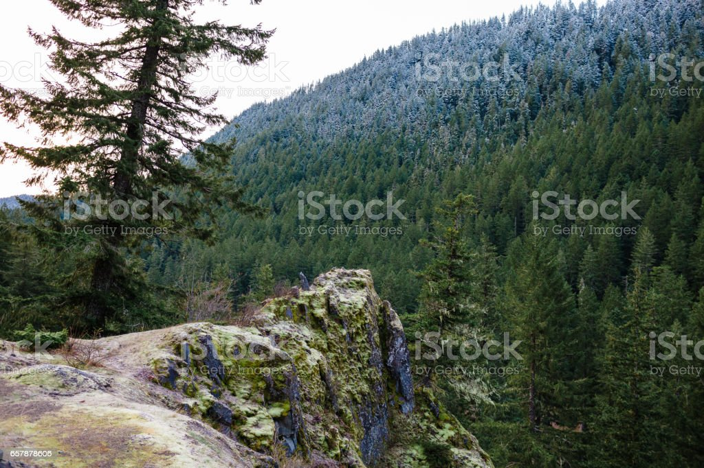 Oregon Rock Outcropping in Forest stock photo