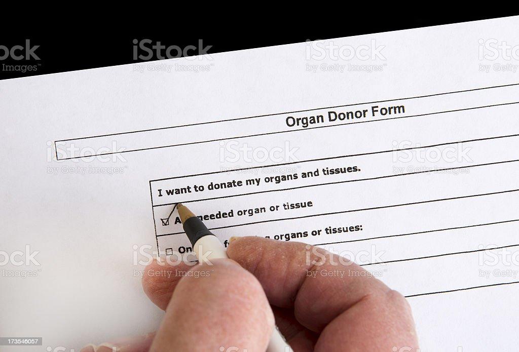 Organ Donor Form stock photo