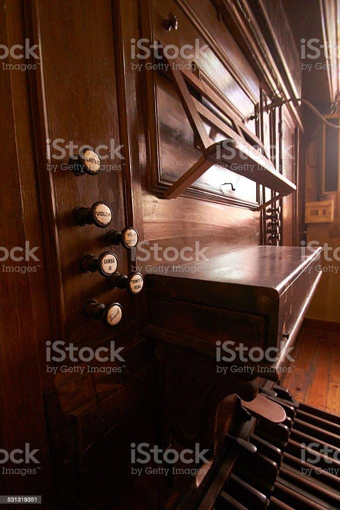 Organ stock photo