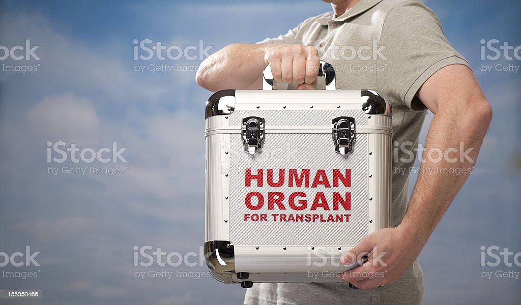 organ transplant stock photo