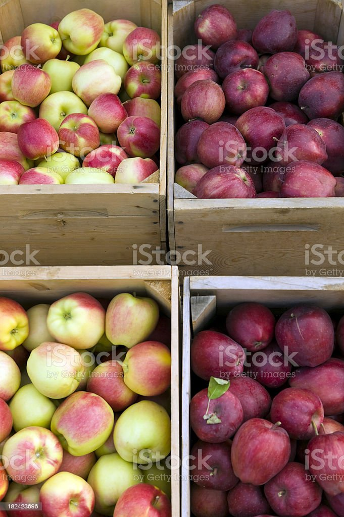 Organic apples in crates at farmers market royalty-free stock photo
