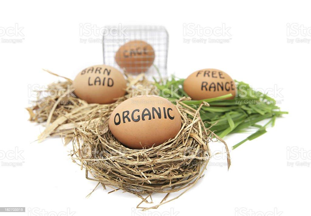 'Organic, Barn Laid, Free Range and Cage Eggs' stock photo
