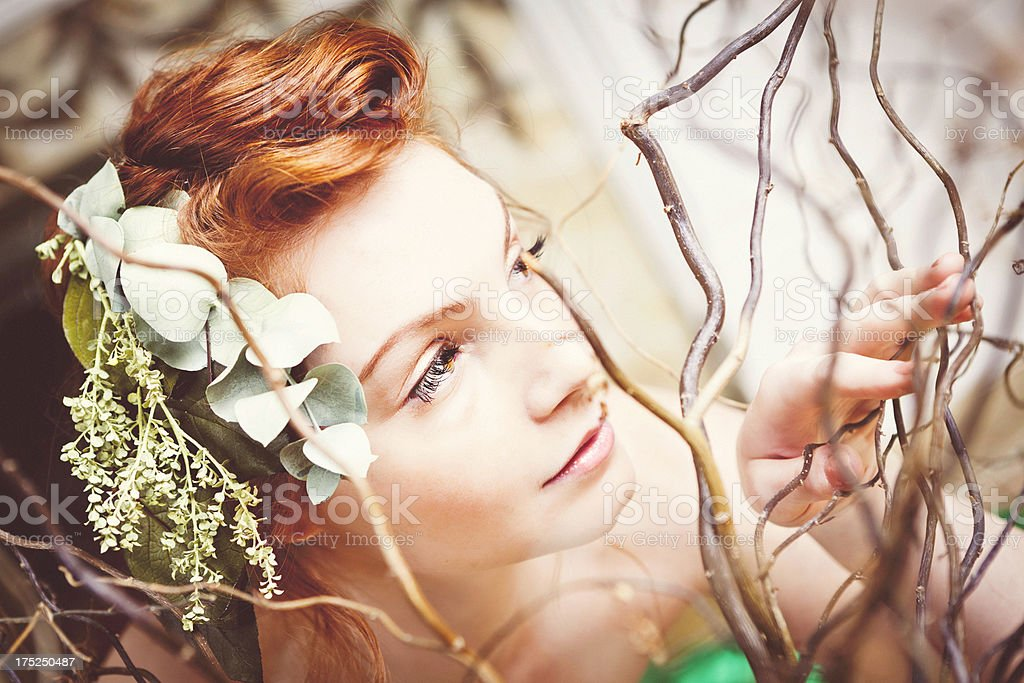 Organic Beauty royalty-free stock photo