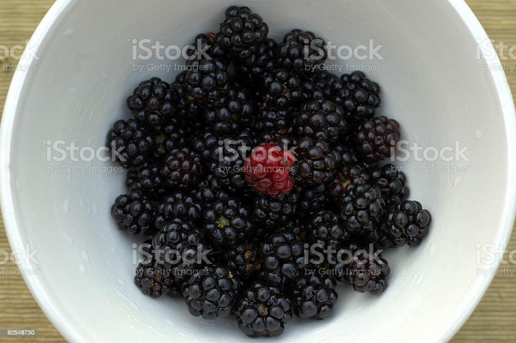 Organic Berries royalty-free stock photo