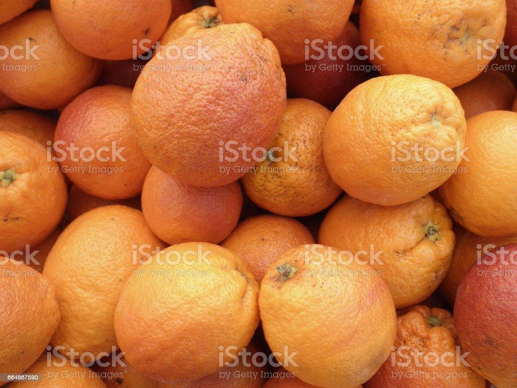 Organic Blood Oranges stock photo