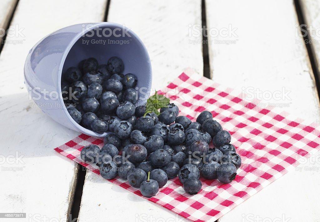 Organic Blueberries royalty-free stock photo