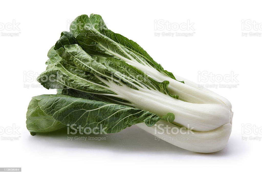 Organic bok choy stock photo