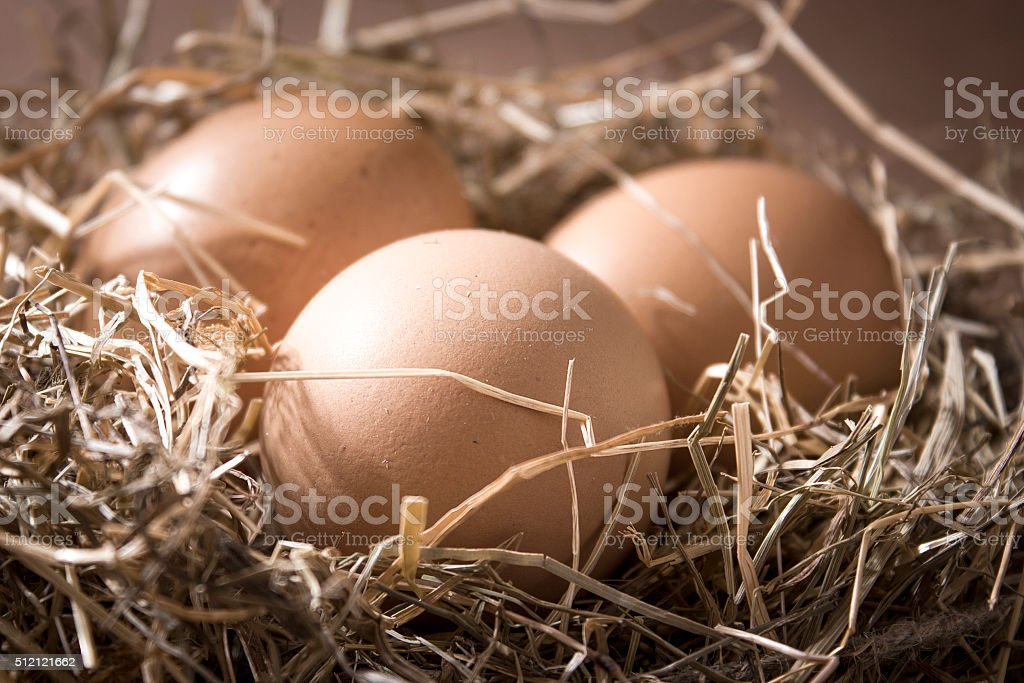 Organic brown eggs in a nest of hay stock photo