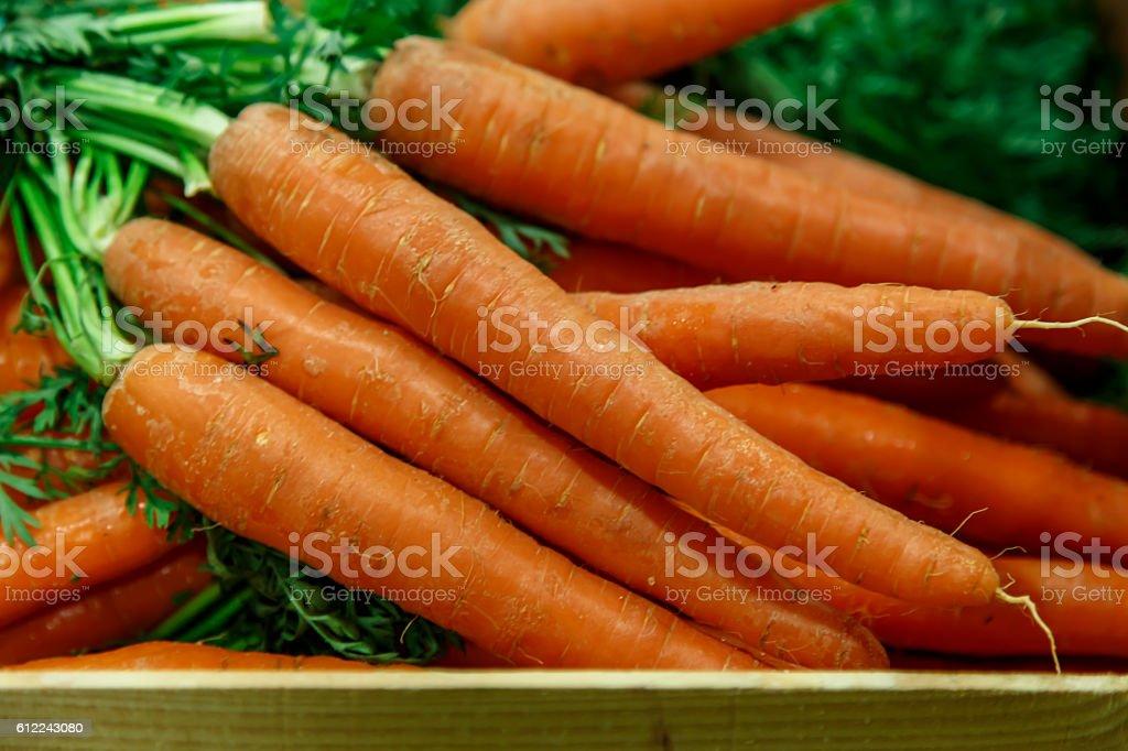 organic carrot group closeup stock photo