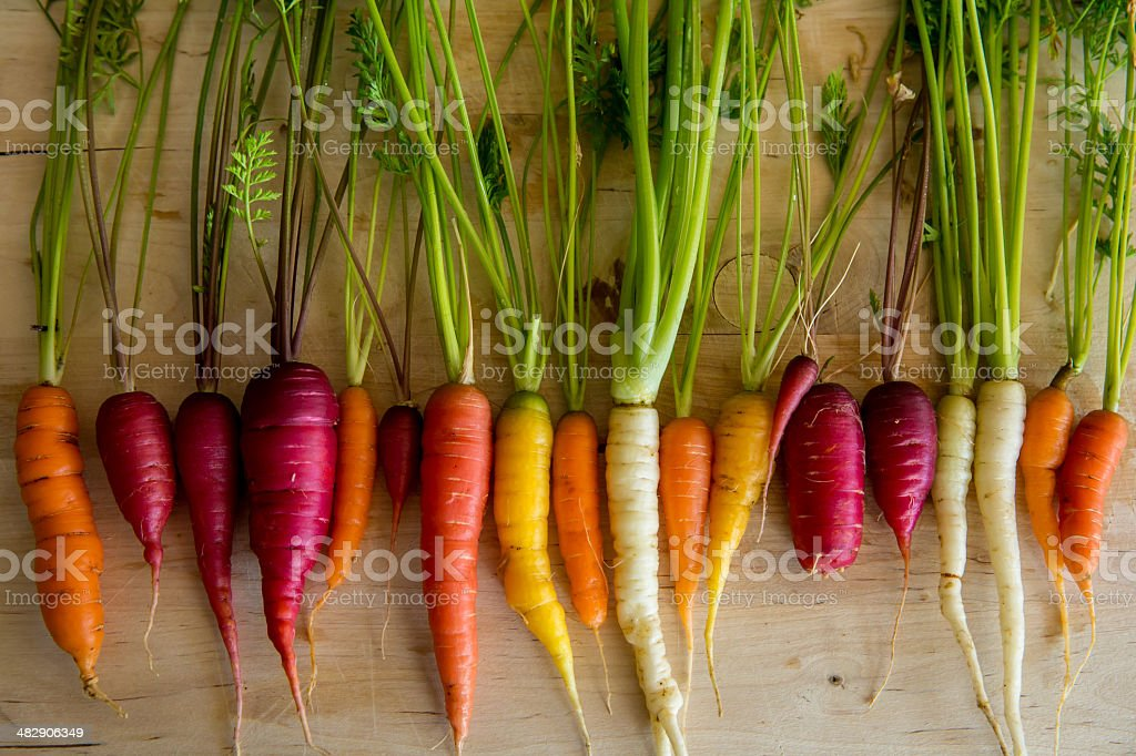 Organic Carrots from the Garden stock photo