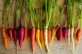Organic Carrots from the Garden