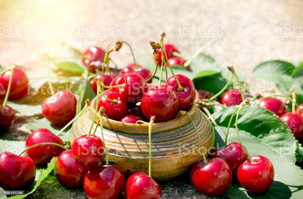 Organic cherry in rustic bowl - refreshing and juicy berry fruit stock photo